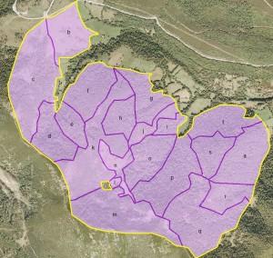 Rodales y cantón del Proyecto de Ordenación Forestal